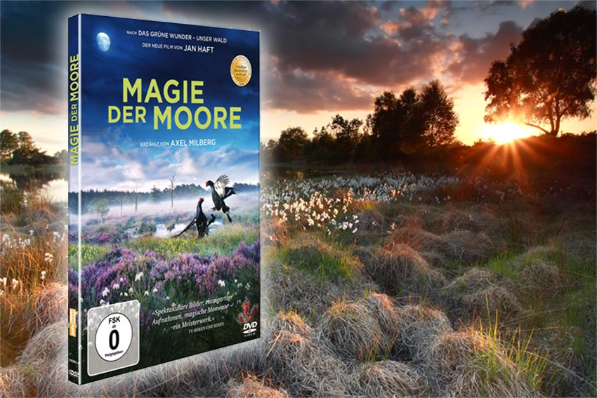 DVD - Magie der Moore